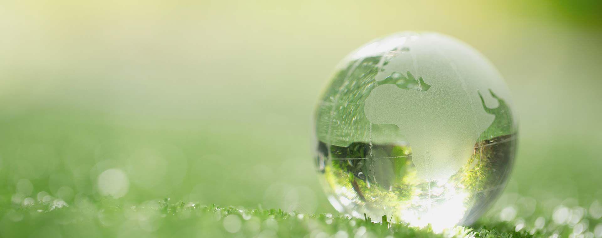 SOSTENIBILITÀ <br>ambientale